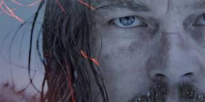 Что смотреть в кино на Рождество: ДиКаприо, медведь и призраки