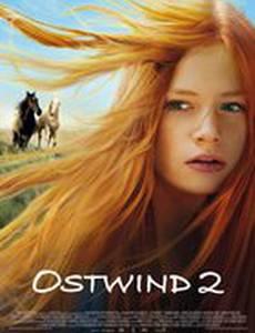 Восточный ветер2
