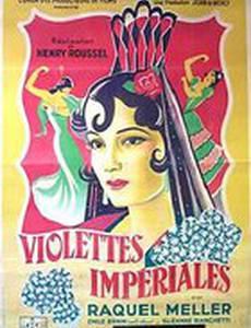 Violettes impériales