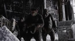 "Кадр из фильма ""Планета обезьян: Война (Война за планету обезьян)"" - 2"