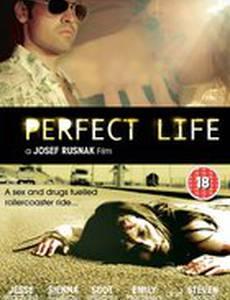 Идеальная жизнь