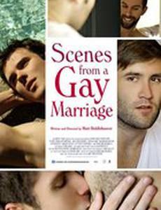 Сцены гей-брака