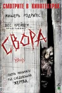 Постер Свора