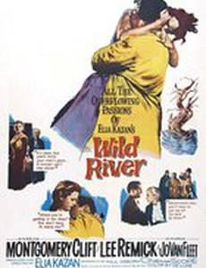 Дикая река
