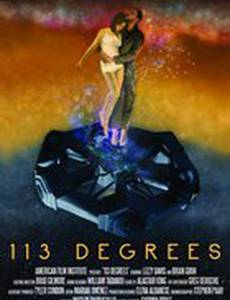 113 градусов