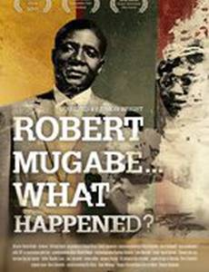 Robert Mugabe... What Happened?
