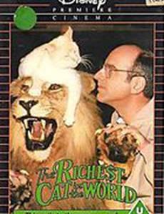 Самая богатая в мире кошка