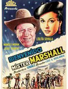 Добро пожаловать, мистер Маршалл
