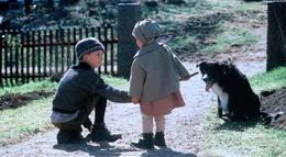 """Кадр из фильма """"Дети из Бюллербю"""" - 2"""