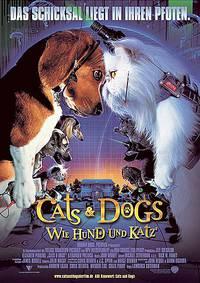 Постер Кошки против собак