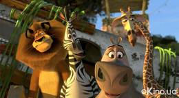 "Кадр из фильма ""Мадагаскар 2"" - 2"