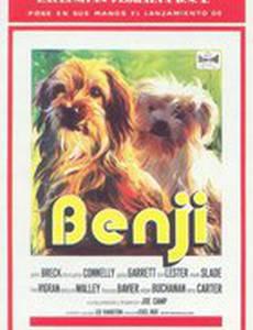 Бенджи