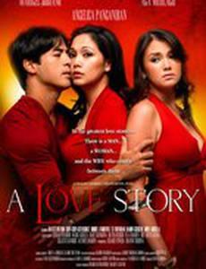 Любовная история