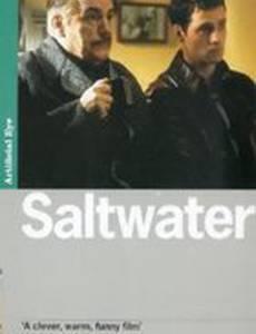 Солёная вода
