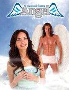 Ангел, крылья любви