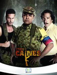 Три Каина