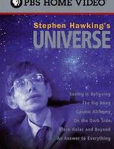 Вселенная Стивена Хокинга (мини-сериал)