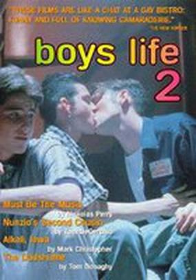 Жизнь парней 2