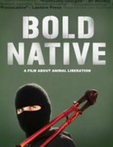 Bold Native