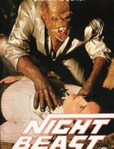 Ночной зверь