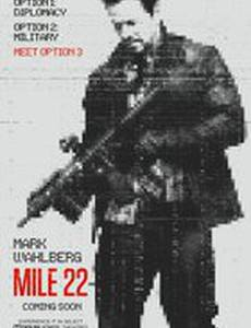 22 мили