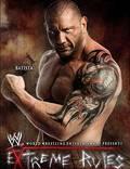 """Постер из фильма """"WWE Экстремальные правила"""" - 1"""