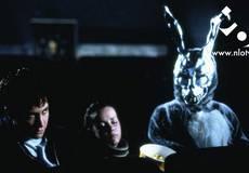Кролик на Хэллоуин: «Донни Дарко» - завтра в «ПроКИНОнаНЛО»