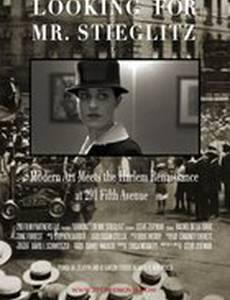 Looking For Mr Stieglitz