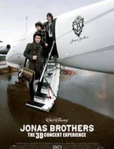 Концерт братьев Джонас