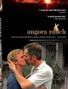 Ранчо «Ангора» (видео)