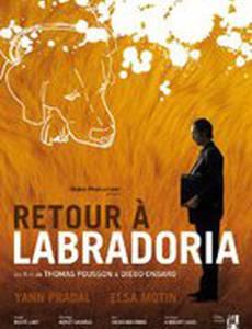 Retour à Labradoria