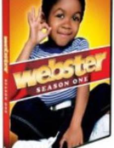 Вебстер