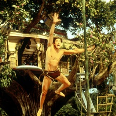 """Кадр из фильма """"Джордж из джунглей"""" - 2"""