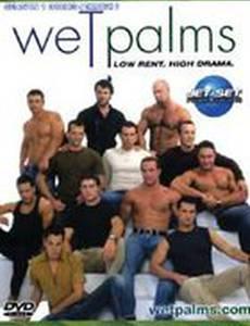Wet Palms