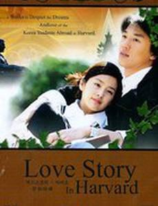 История любви в Гарварде