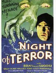 Ночь террора