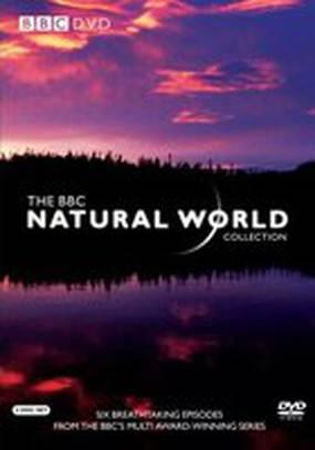 BBC: Живой мир