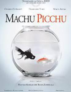 Мачу Пикчу