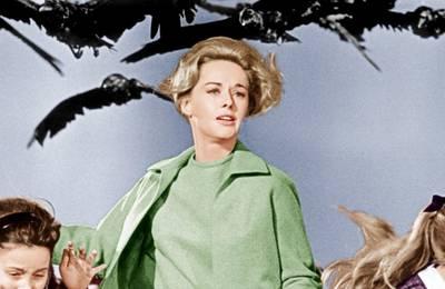 BBC готовит фильм на основе «Птиц» Хичкока