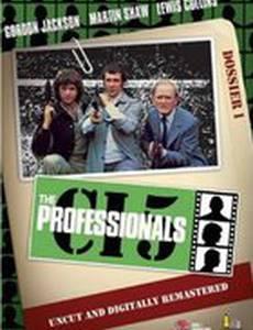 Профессионалы