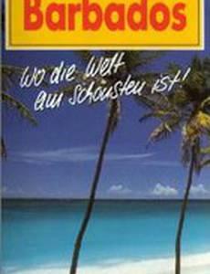 Barbados Quest