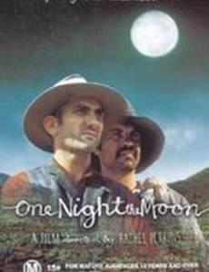 Однажды лунной ночью