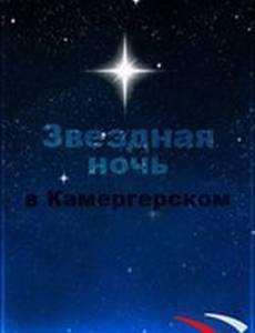 Звездная ночь в Камергерском