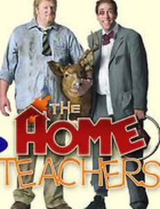 Домашние учителя
