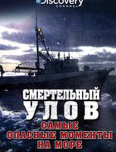Смертельный улов: Самые опасные моменты на море