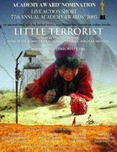 Маленький террорист