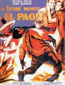 Лихорадка приходит в Эль-Пао