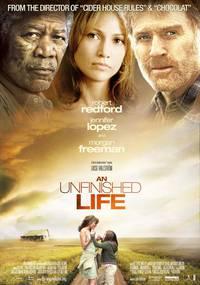 Постер Незаконченная жизнь