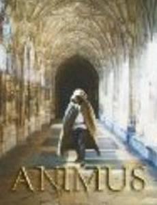 Animus (видео)