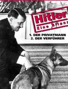 Hitler - eine Bilanz
